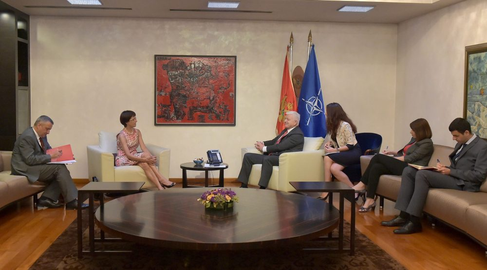 Czech ambassador: Montenegro made significant progress