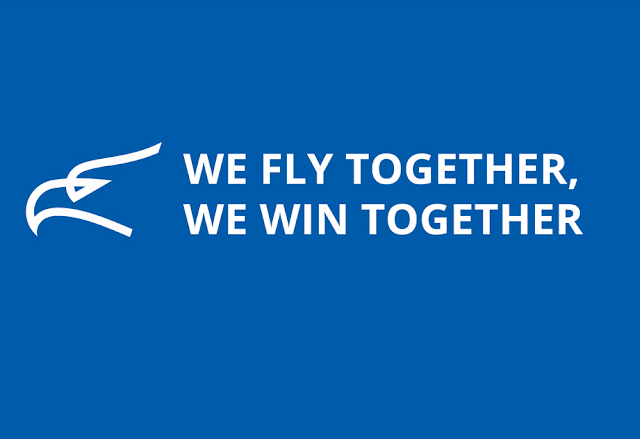 Montenegro Airlines delays service resumption